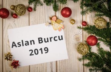Aslan Burcu 2019 Yorumları