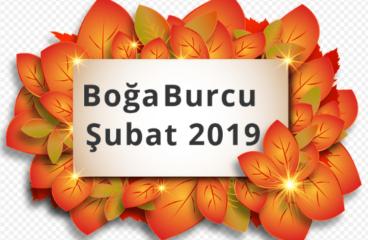 Boğa Burcu Şubat 2019