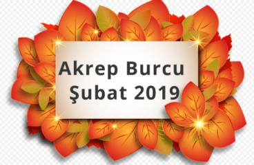 Akrep Burcu Şubat 2019