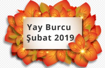 Yay Burcu Şubat 2019