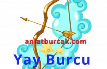 Yay Burcu Ağustos 2019