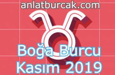 Boğa Burcu Kasım 2019