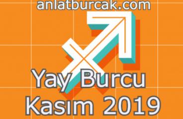 Yay Burcu Kasım 2019