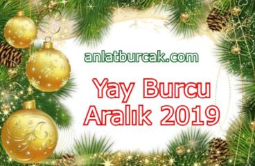 Yay Burcu Aralık 2019