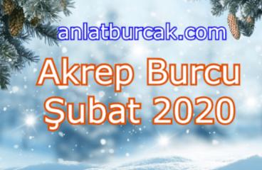 Akrep Burcu Şubat 2020