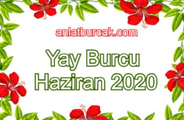 Yay Burcu Haziran 2020