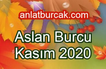 Aslan Burcu Kasım 2020