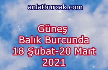 Güneş Balık Burcunda 18 Şubat-20 Mart 2021